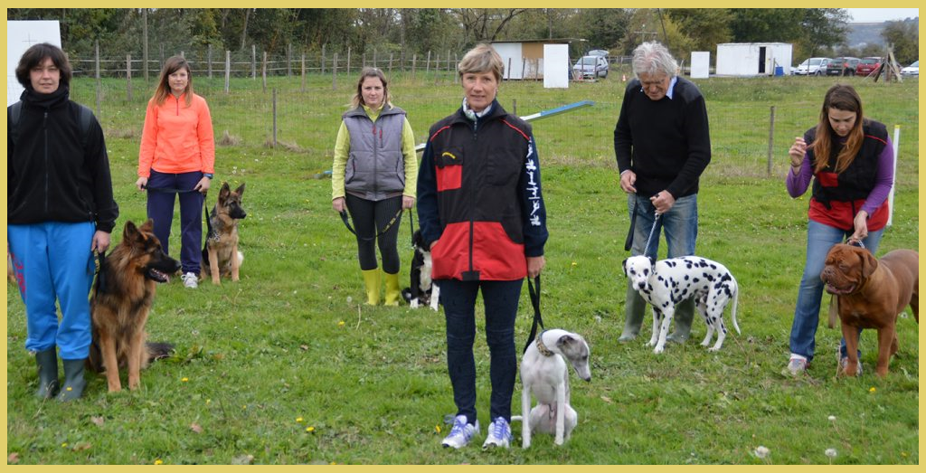 club canin ouvert le dimanche
